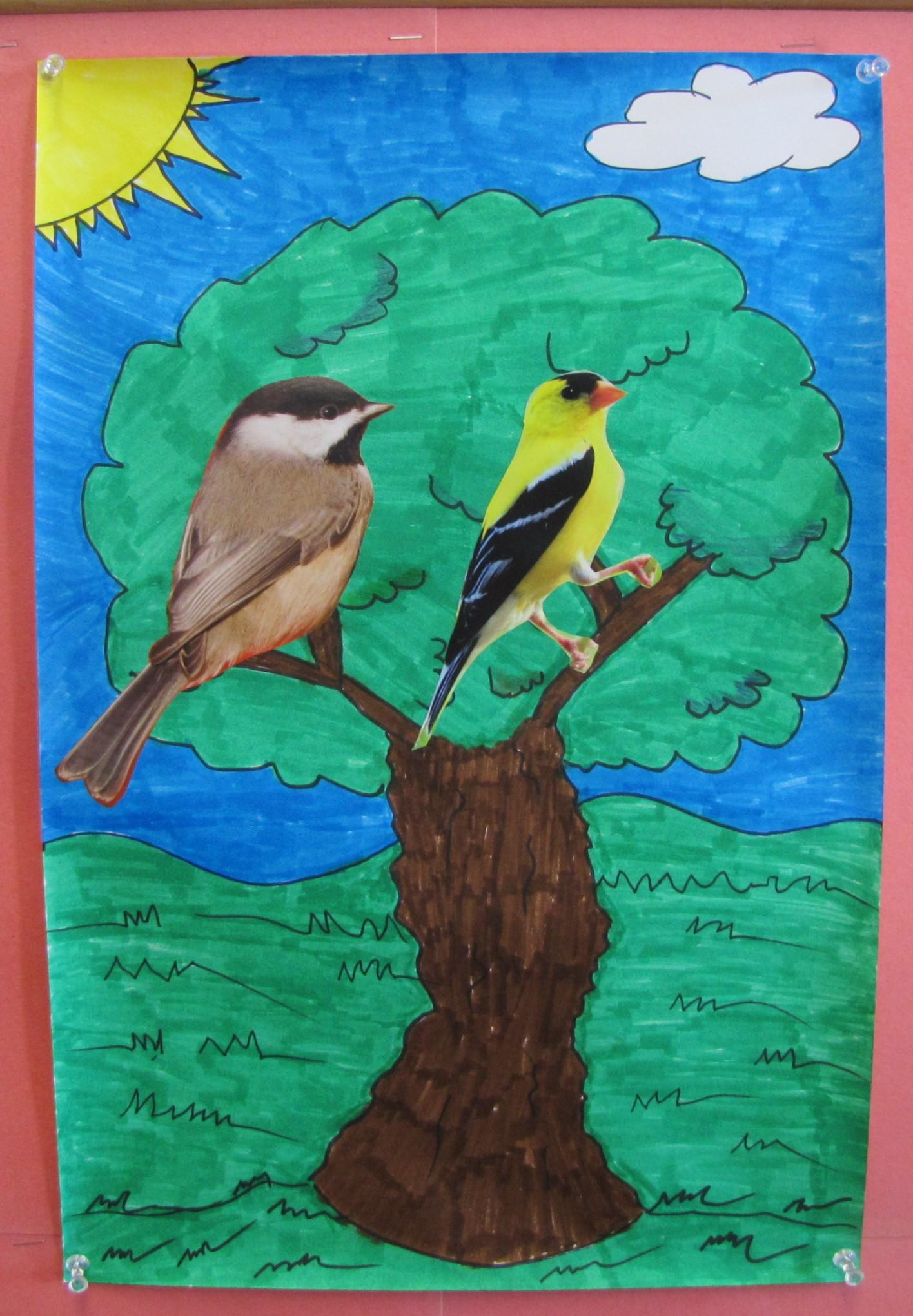 Finch bird in a tree