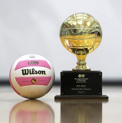 volleyball and trophy