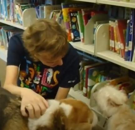 Puppies at Estill Library