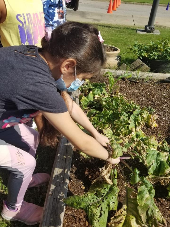 A student in the garden.