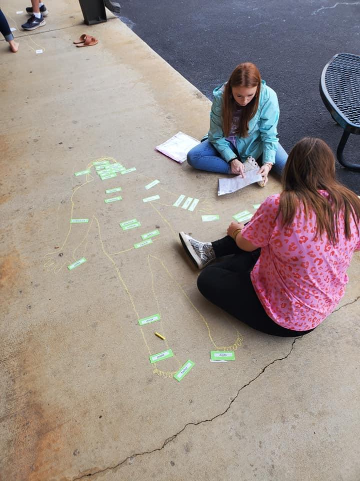 Anatomy class identifying chalk person body parts
