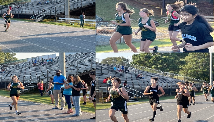 Cross Country in Action