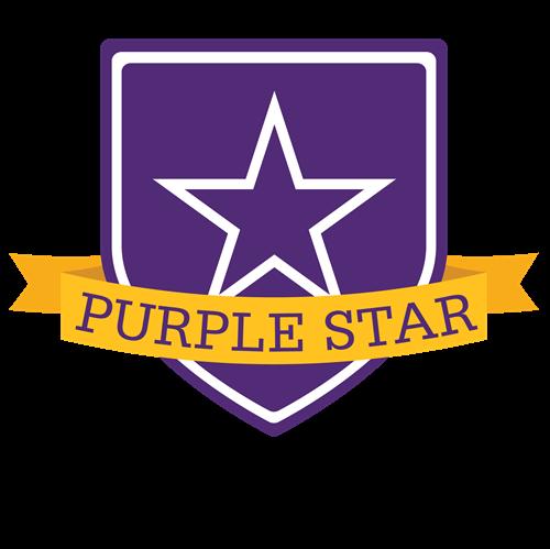 Purple Star Image