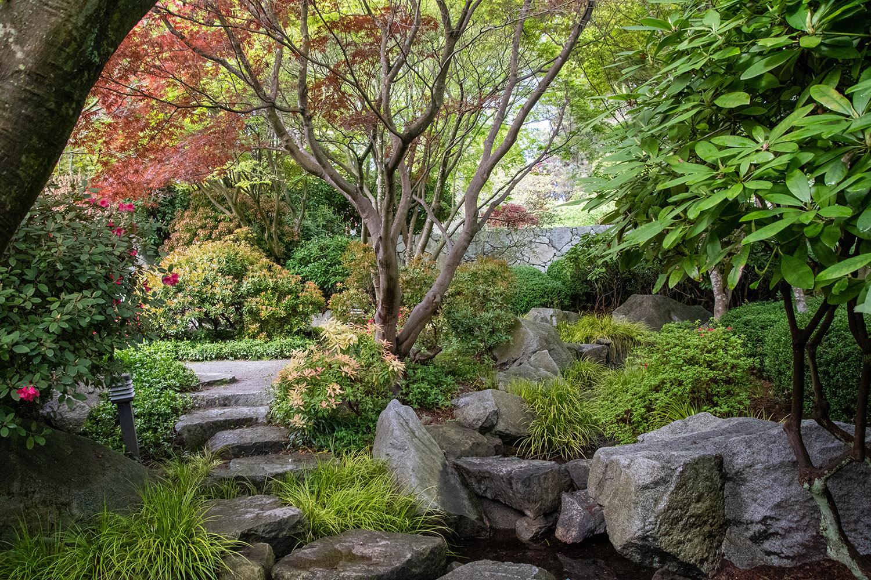 Stepping Stones Japanese Garden