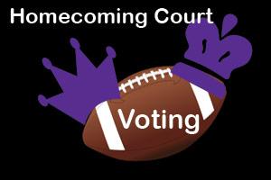 HoCo Voting Day
