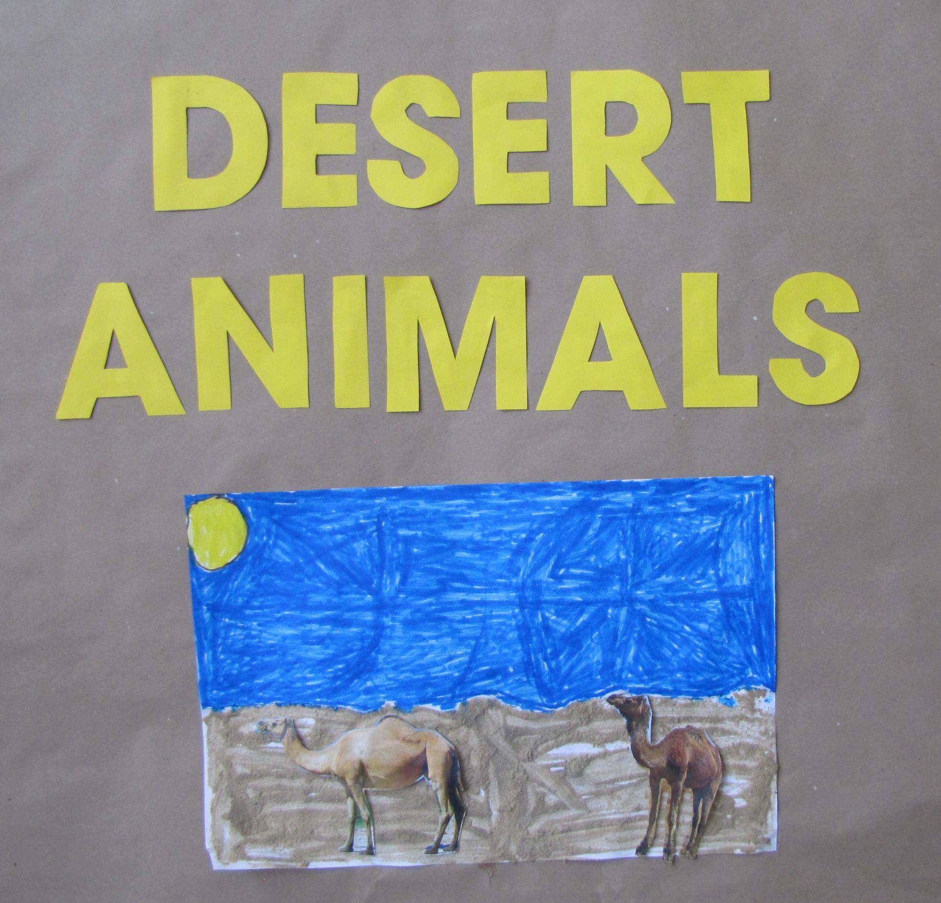 Desert animal
